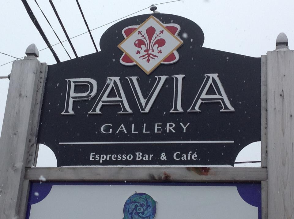 pavia gallery