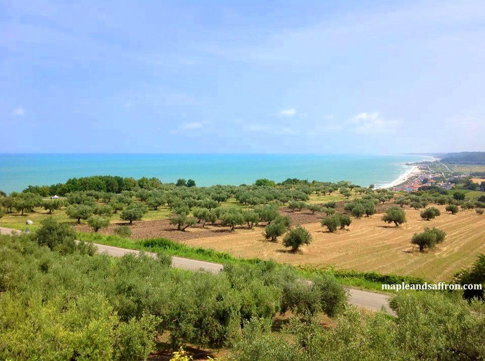 Maple&Saffron Abruzzo landscape
