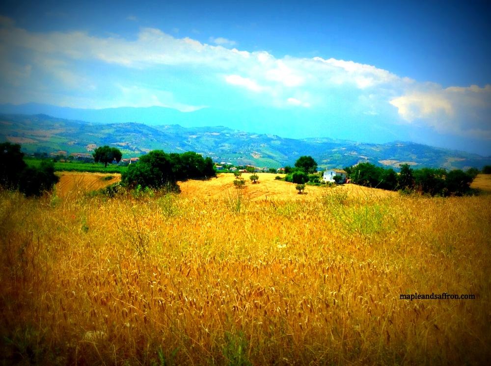Maple&Saffron Abruzzo tours hill landscape