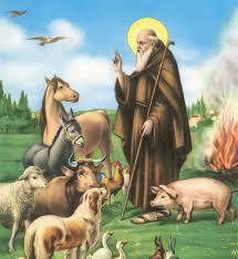 Saint Anthony - Sant'Antonio Abate