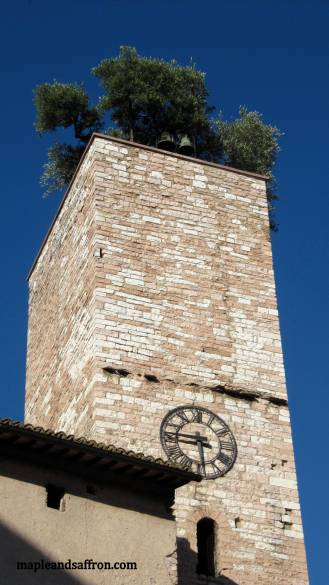 Spello - tower