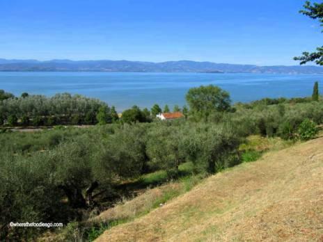 castiglione-sul-lago14