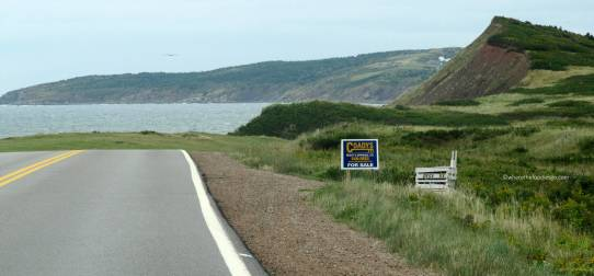 CABOT TRAIL43 - where the foodies go