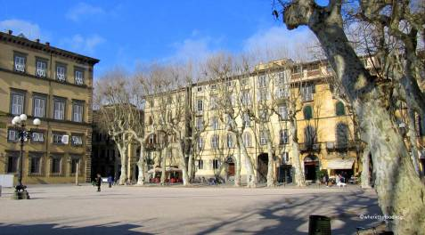 lucca - where the foodies go 10