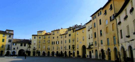lucca - where the foodies go 4