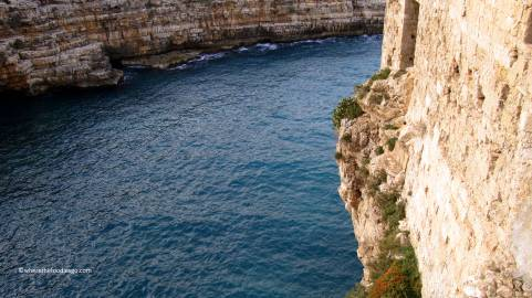 polignano a mare - where the foodies go12