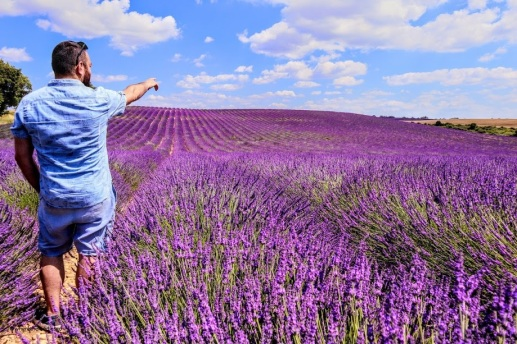 Provence - where the foodies go 12