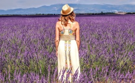 Provence - where the foodies go 3